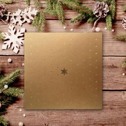 Kalėdinis atvirukas FS893az