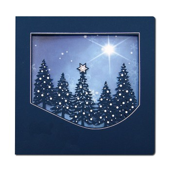 Kalėdinis atvirukas FS605ng