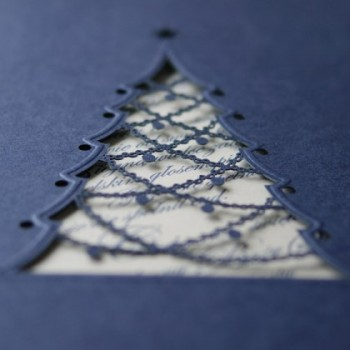 Kalėdinis atvirukas FS480i