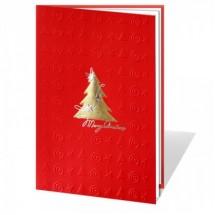 Kalėdinis atvirukas 01369WR
